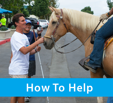 Column photo box shows World Access For The Blind President Daniel Kish rubbing the nose of a Palomino horse at our 2014 Alcon 'Run, Walk or Ride' fundraising event. The text banner reads: How To Help.
