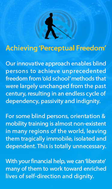 A graphic of the World Access For The Blind logo is followed by the text: Achieving Perceptual Freedom. Our innovative approach enables blind persons to achieve unprecedented freedom from 'old school' methods that were largely unchanged from the past century, resulting in an endless cycle of dependency, passivity and indignity. For some blind persons, orientation & mobility training is almost non-existent in many regions of the world, leaving them tragically immobile, isolated and dependent. This is totally unnecessary. With your financial help, we can 'liberate' many of them to work toward enriched lives of self-direction and dignity.