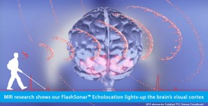 Slide shows a screen grab from an animation of the human brain from the Catalyst TV show in Australia with the visual cortex area at the rear of the brain lighting up in a red color., and a red pulse line depicting an outgoing echolocation click and the returning echo. A series of echolocation sonar waves by Simon Crowhurst are superimposed emanating from a white, right-side silhouette of Daniel Kish walking with a full length cane while wearing a backpack. The banner text reads: MRI research shows our Flash Sonar echolocation lights-up the brain's visual cortex.