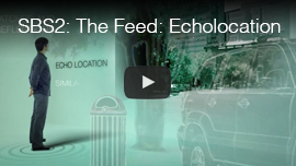 Video thumbnail from Australian TV network SBS2 shows an animated graphic of echolocation from the program series The Feed. Click on the thumbnail to go to the video.