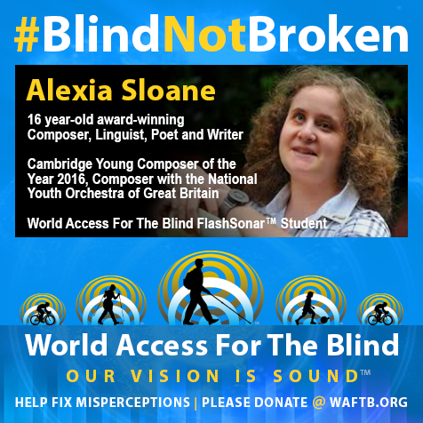 16 year-old award-winning Composer, Linguist, Poet and Writer. Cambridge Young Composer of the Year 2016. Composer with the National Youth Orchestra of Great Britain. World Access For The Blind FlashSonar Student.