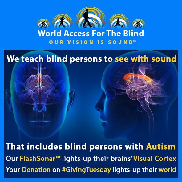 We teach blind persons to see with sound. That includes blind persons with Autism. Our FlashSonar lights-up their brains' Visual Cortex. Your donation on Giving Tuesday lights-up their world. Image shows transparent forward and side views of a human head with the area of the brain affected by Autism highlighted.