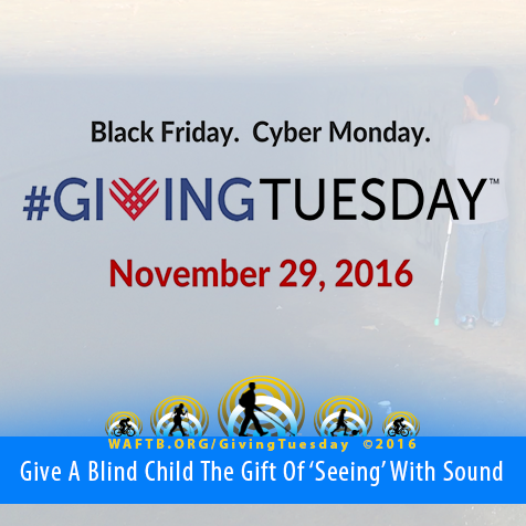 Black Friday. Cyber Monday. Giving Tuesday. November 29, 2016. Give a blind child the gift of 'seeing' with sound.